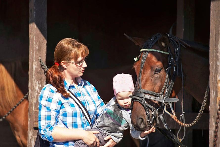 Jenni Lehtisen tytär Emmi Nurmi¬laukas on tottunut kotitallin hevosiin. Vermossa kisannut Lyric Broline on yksi niistä.