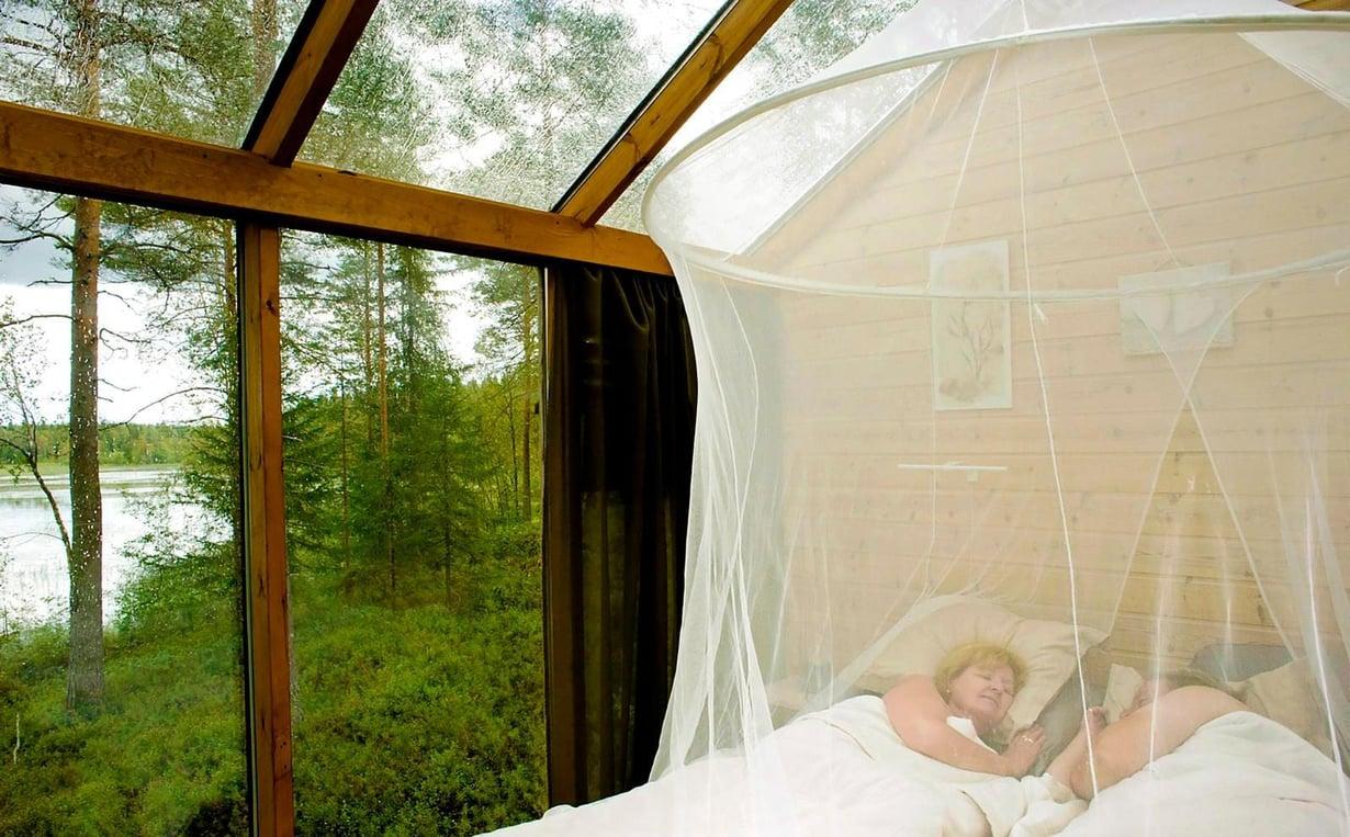 Lasimajassa pitäisi oikeastaan valvoa. Tuleekohan pöllö katsomaan nukkujia yöllä?
