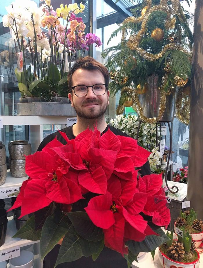 – Joulutähti pitää yhä pintansa, sanoo Bieder Ruoholahti -kukkaliikkeen Tapio Komminaho.