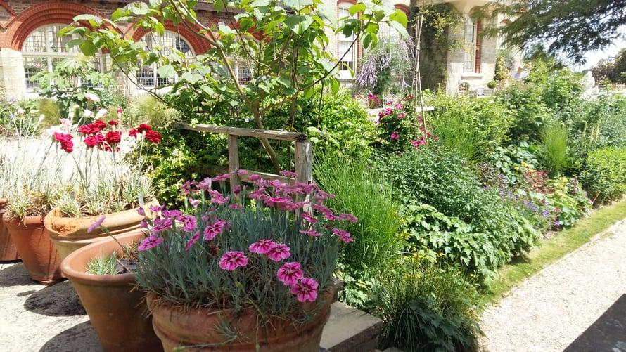 Standen Housen puutarhassa osa kasveista on ruukuissa.
