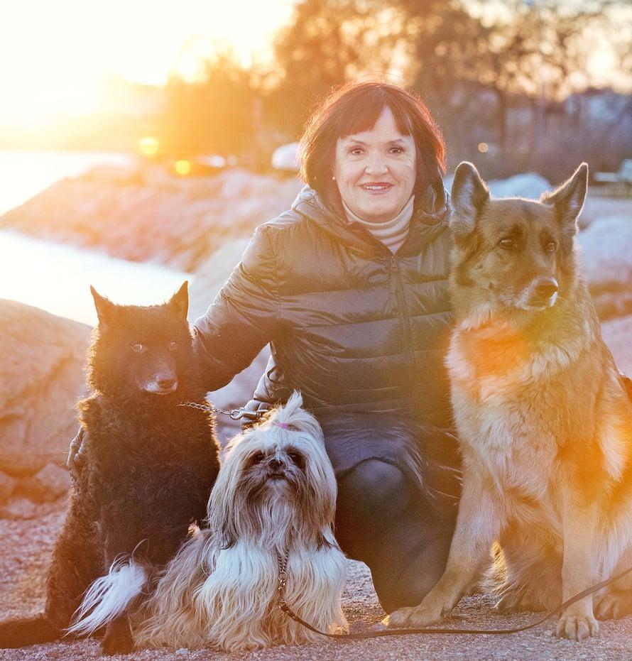 Ulla Koljonen oli vähällä menettää Sri Lankassa omaisuutensa ja rakkaat lemmikkinsä, saksanpaimenkoira Aidan, mudi Moccan ja shih-tzu Mopin.