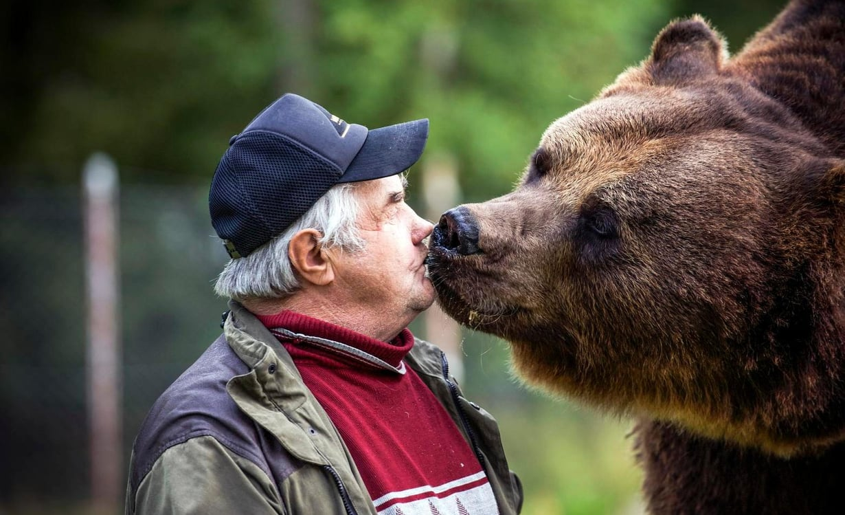 Juuso-karhu tykkää suukotella isäntäänsä.