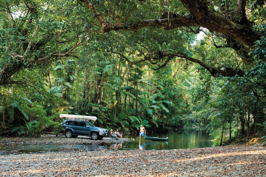 Maarit ja Alpo suosittelevat metsäretkeä. Cooper Creek on maailman vanhimpia yhä säilyneitä sademetsiä.