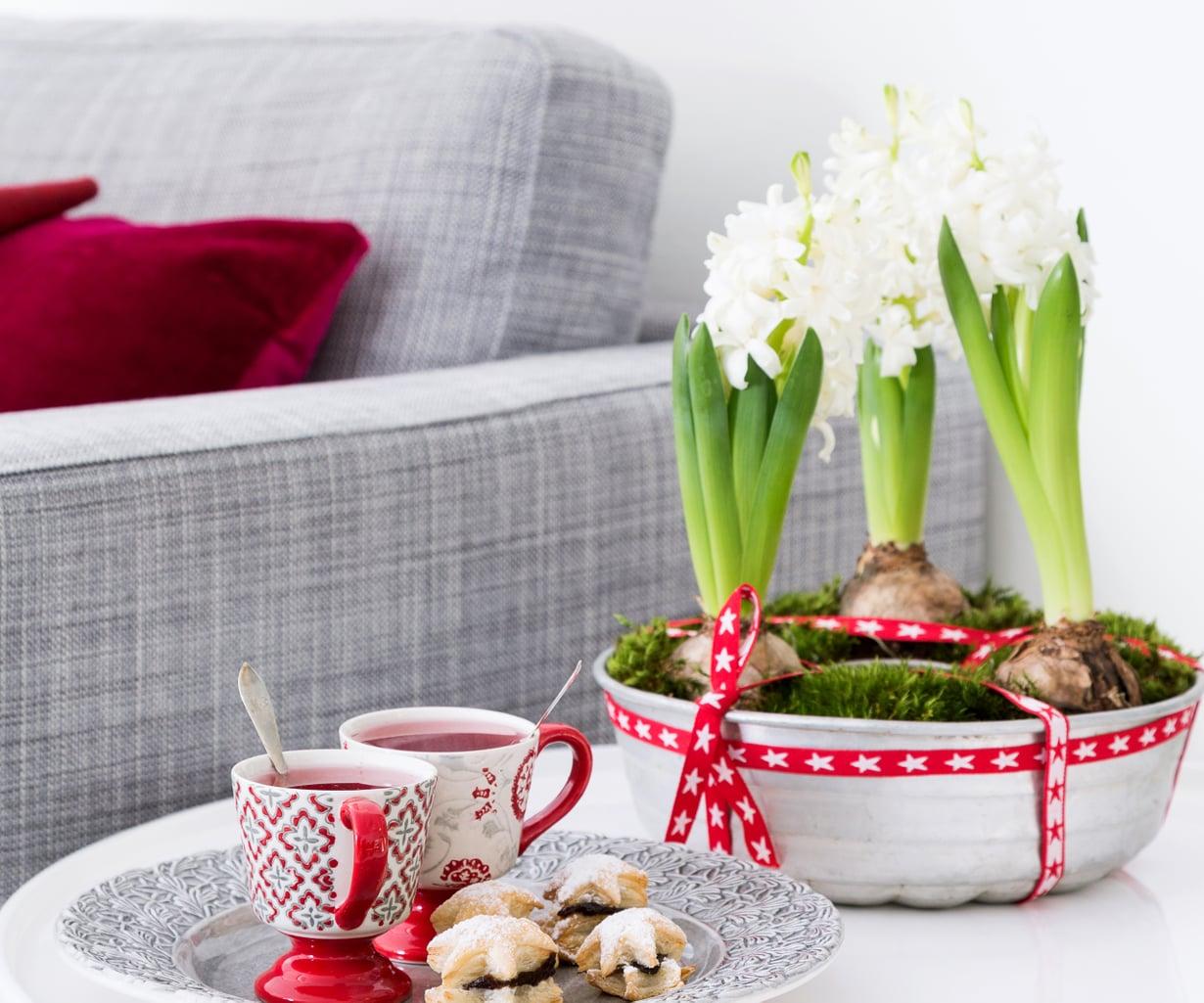 Hyasintit ovat joulukukkien aatelia. Kokoa useampi asetelma, saat joulun tuoksua joka huoneeseen.