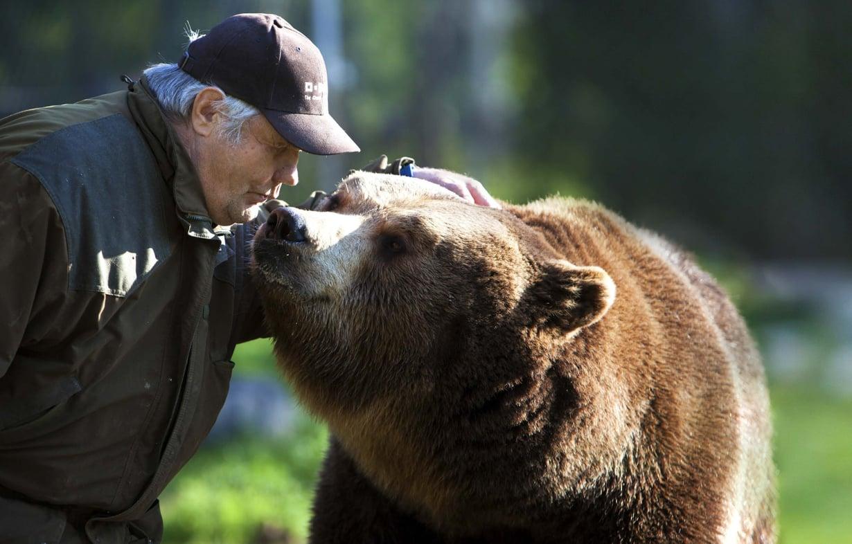 – Karhu on fiksu ja tunteellinen eläin. Juuso tykkää, kun sille porisee, Sulo Karjalainen sanoo.