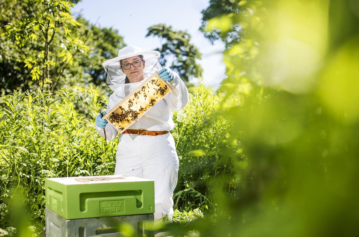 Eläkkeelle jäätyään Maaret Virtanen lisäsi hunajantuotantoa.