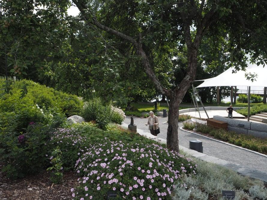 Pappilan puutarha muuttuu rantaa lähestyttäessä saumattomasti Pappilanpuistoksi.
