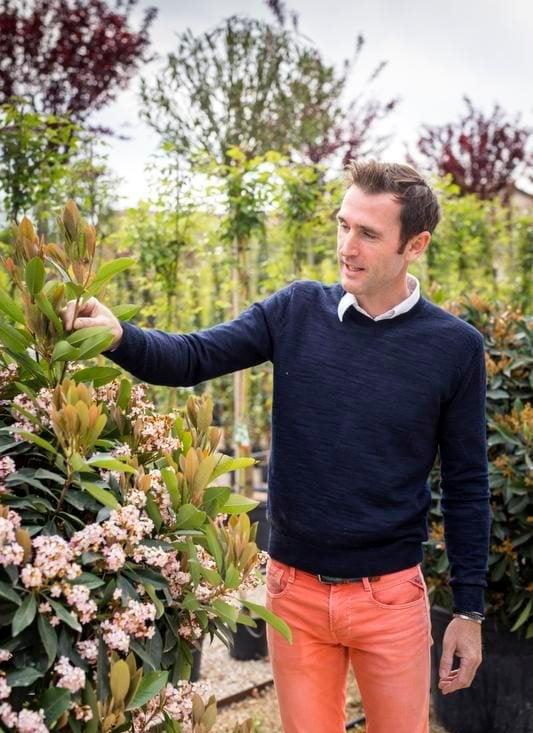 – Provencessa ajatellaan, että puutarhan on kestettävä sukupolvelta toiselle, William Hartley sanoo.