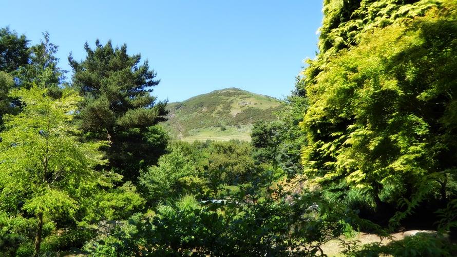 Keskustaan on hädin tuskin kaksi kilometriä ja näkyvissä on pelkkää maalaismaisemaa.