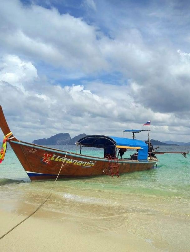 Toimittaja Eveliina Linkoheimo kuvasi Andamaanienmeressä kelluneen pitkähäntäveneen.