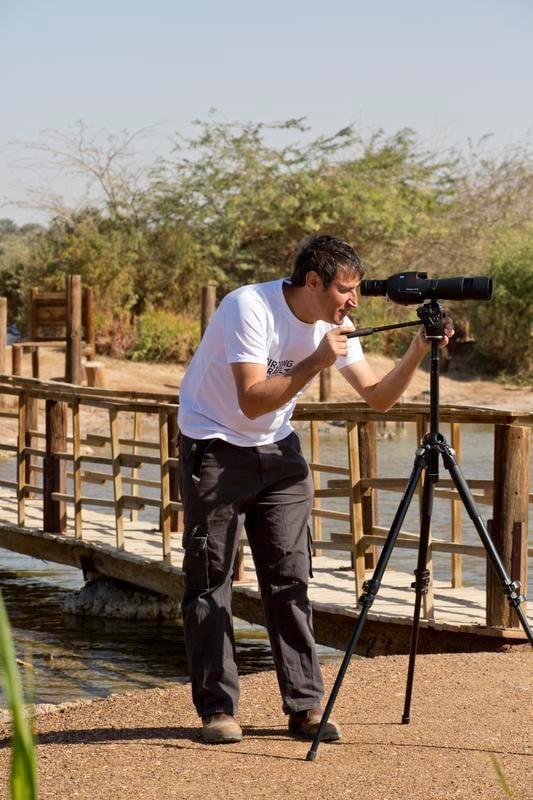 Eilatin lintupuiston johtaja, ornitologiNoam Weiss näyttää, mihin aloittelijan kannattaa katsoa kaukoputkella.
