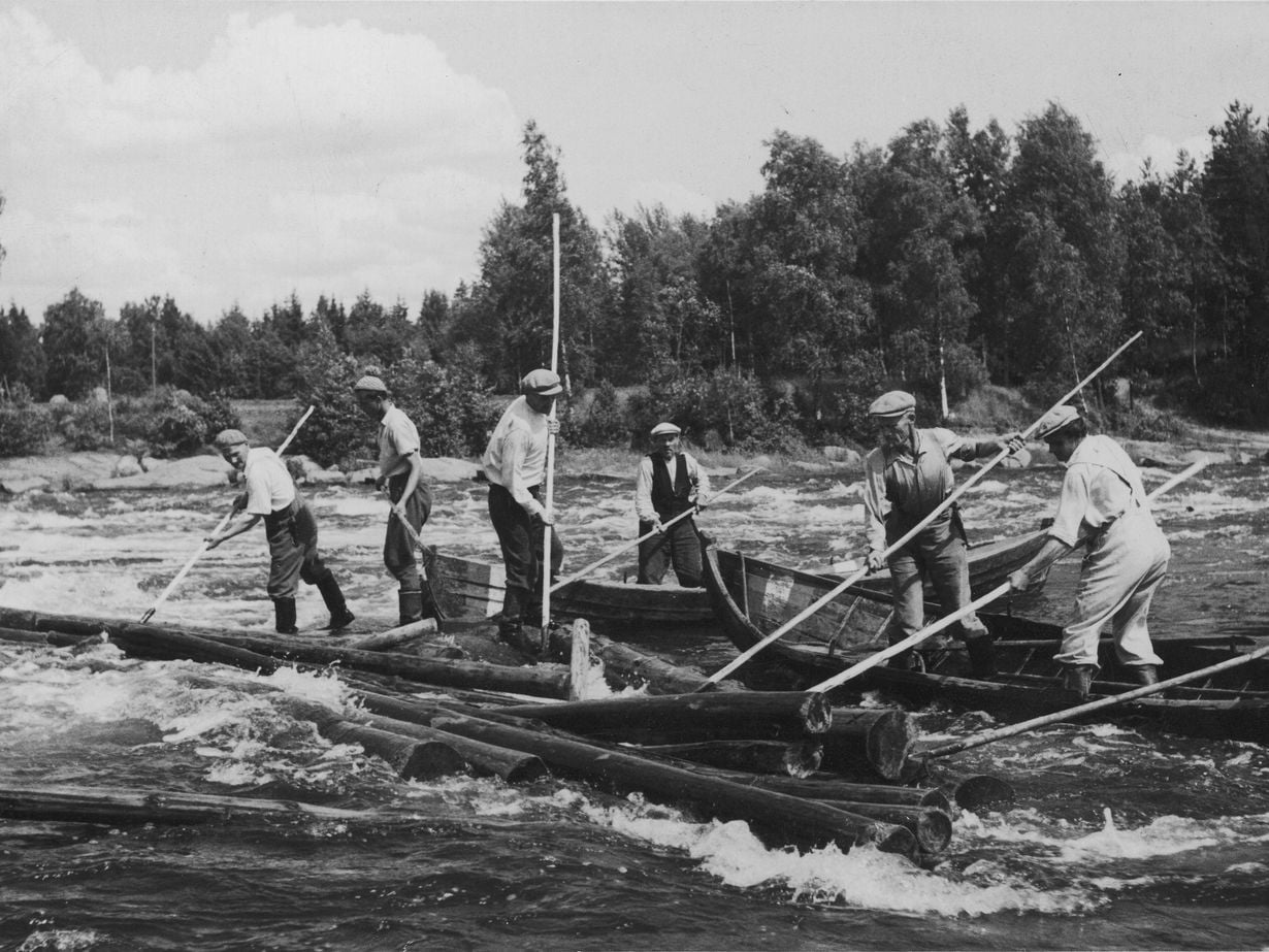 Kuva on elokuvasta Tukkijoella tapahtuu, 1950.