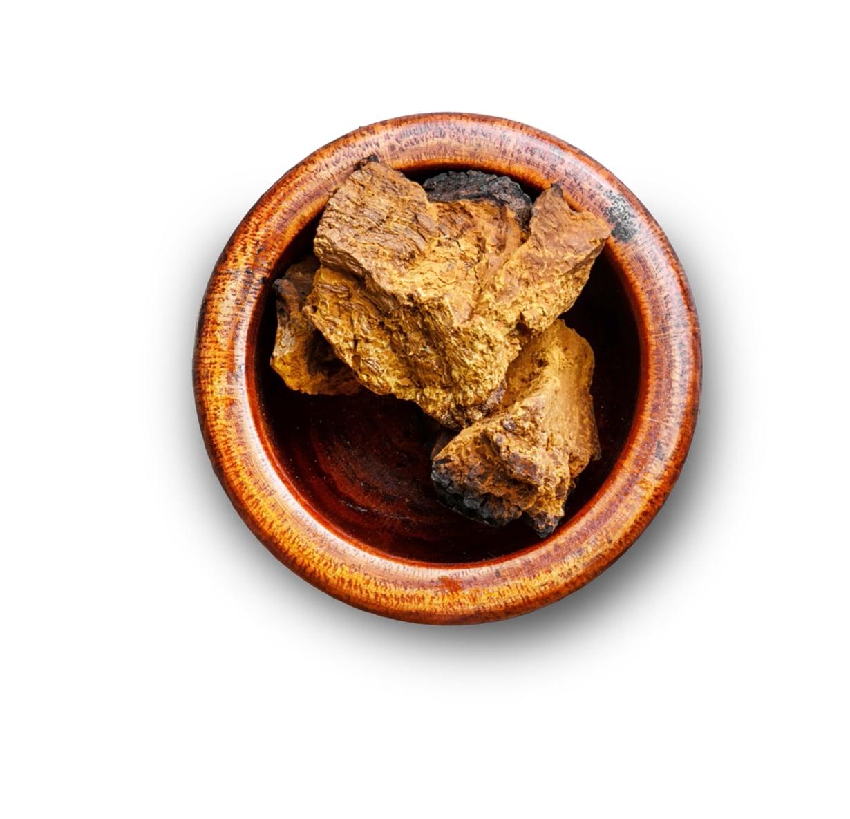 Pakurikääpä on lehtipuissa kasvava sieni. Kuivatusta käävästä tehtyä jauhetta käytetään juomien valmistamiseen.