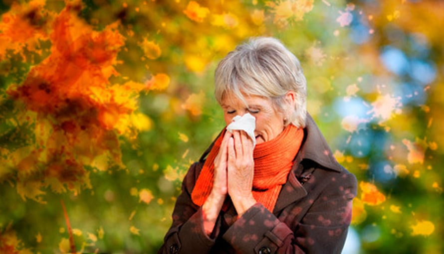 Allergian Oireet Kurkussa
