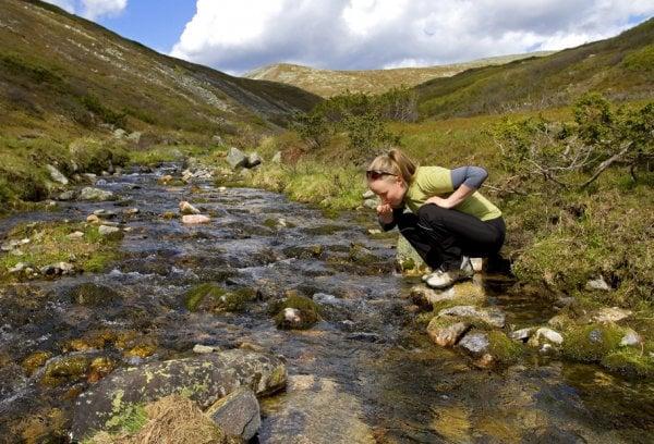 Taivaskeron reitillä Pallastuntureilla voi juoda suoraan purosta.