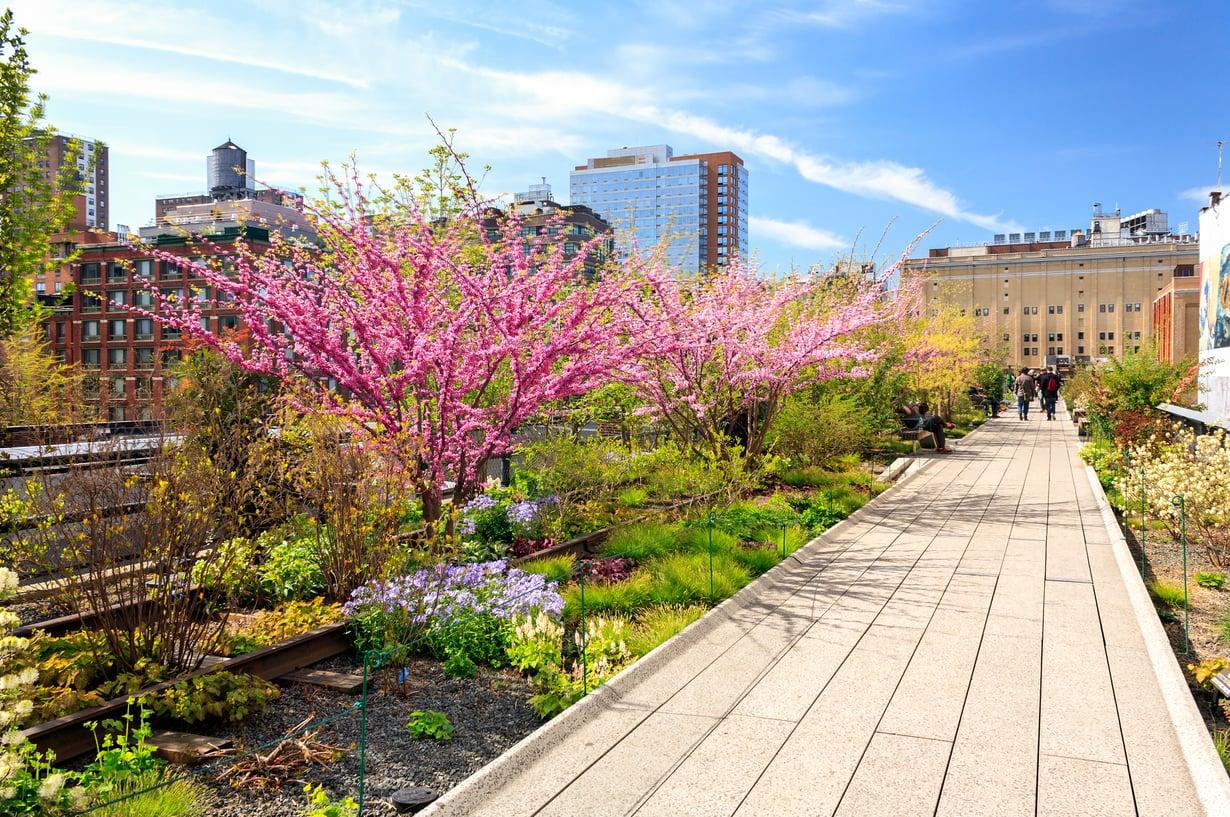 High Line -puisto on rakennettu entisen rautatielinjan kohdalle.