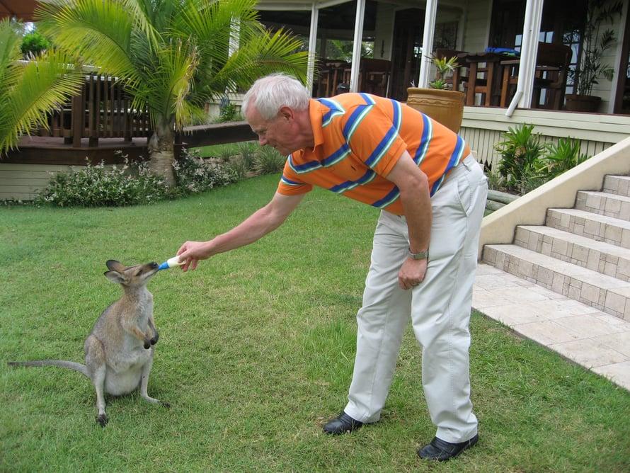 Olli pääsi syöttämään kengurua Australian-matkallaan.
