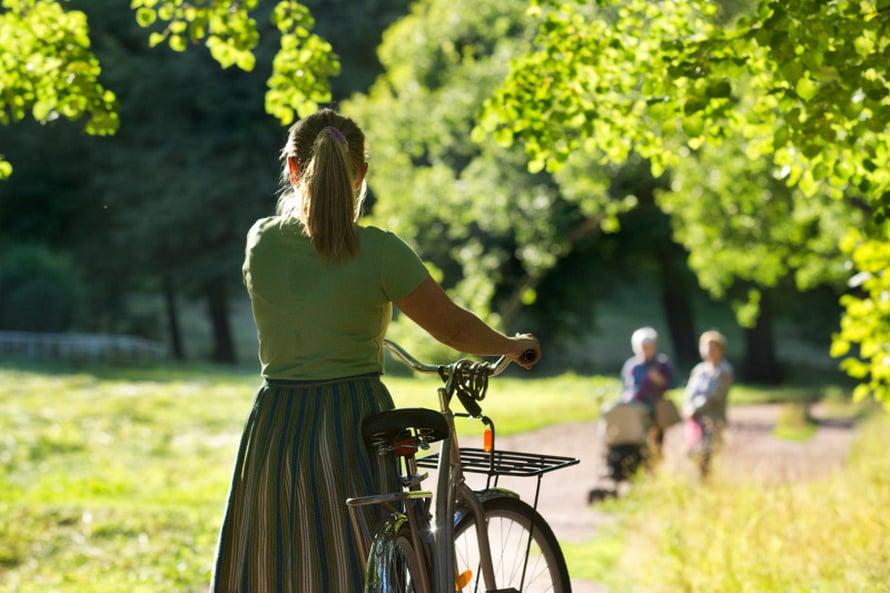 Kauniiseen Monrepos-puistoon on sen verran matkaa, että kannattaa mennä taksilla tai vuokrata pyörä. Itse puistossa ei kyllä saa pyöräillä.