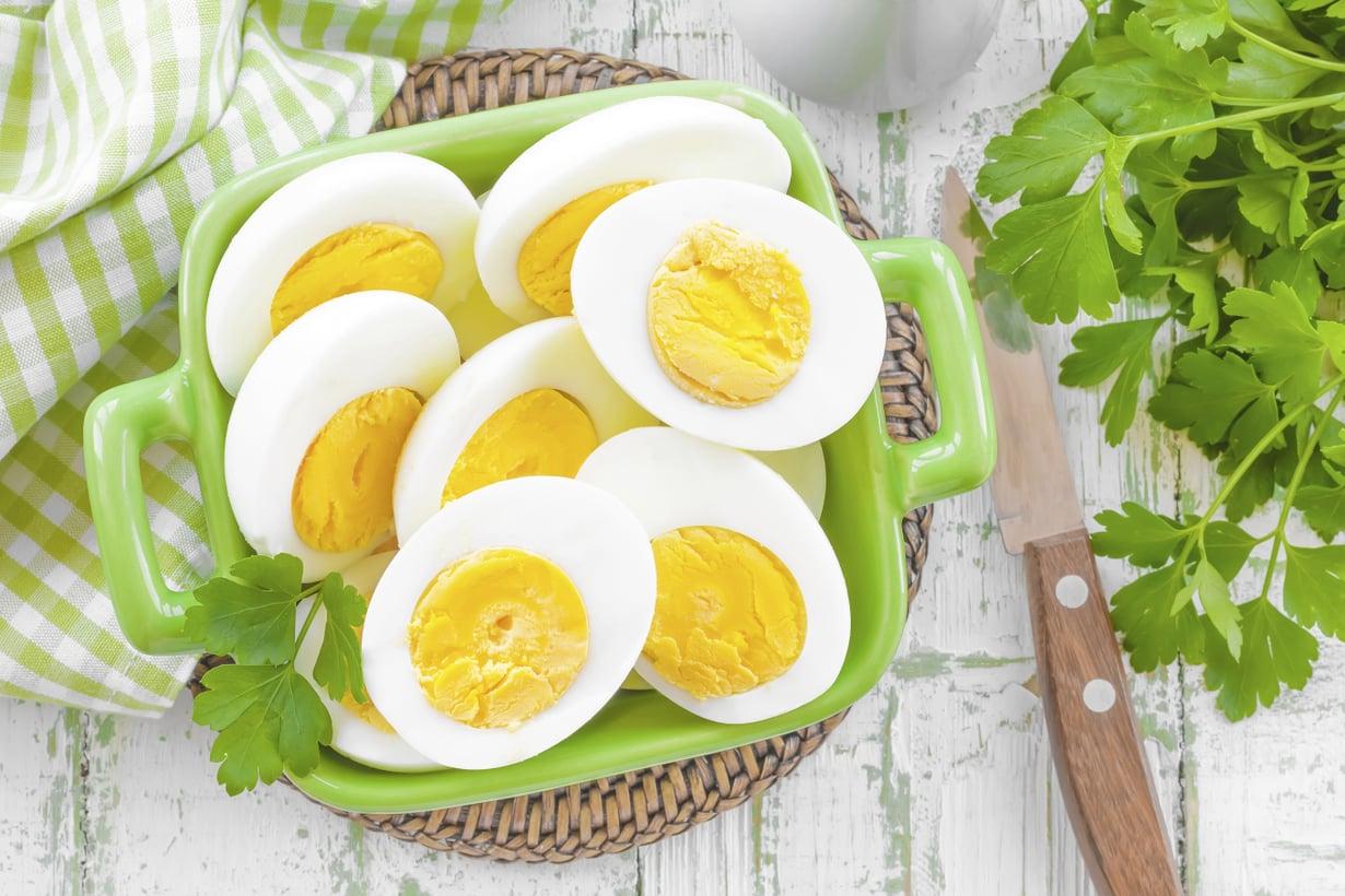 kananmuna salmonella