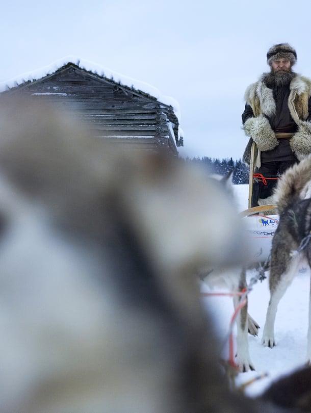 Huskysafariyrittäjä Susi Nordman pukeutuu susiturkkiin ja vetää retkiä Venäjän rajan tuntumassa.