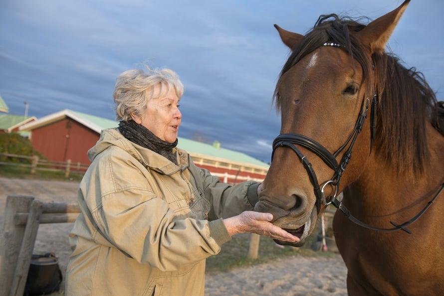 Anita ei ratsasta, mutta hän pitää Sulonan hellimisestä. Herkkuja löytyy aina taskunpohjalta, ja Sulona tietää sen.