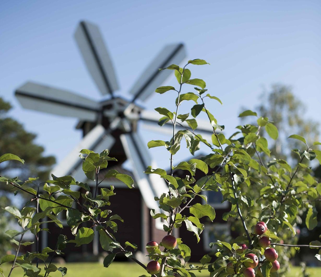 Tuulimylly toimii huvimajana. Se rakennettiin pelkän kuvan perusteella.