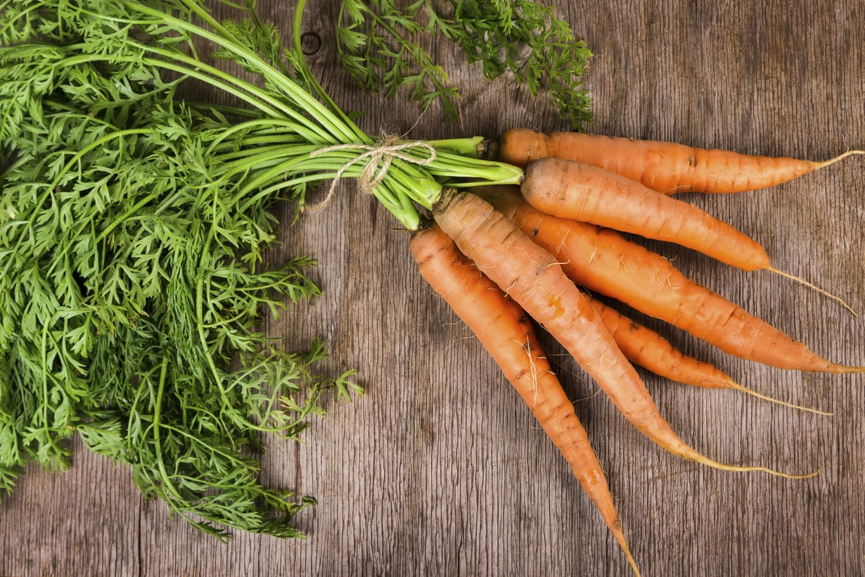 Tiesitkö? Porkkana on kivennäis- ja hivenainetykki, joka pitää nälän loitolla kuitujensa ansiosta.