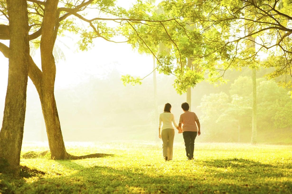 Dating elämän polku 7