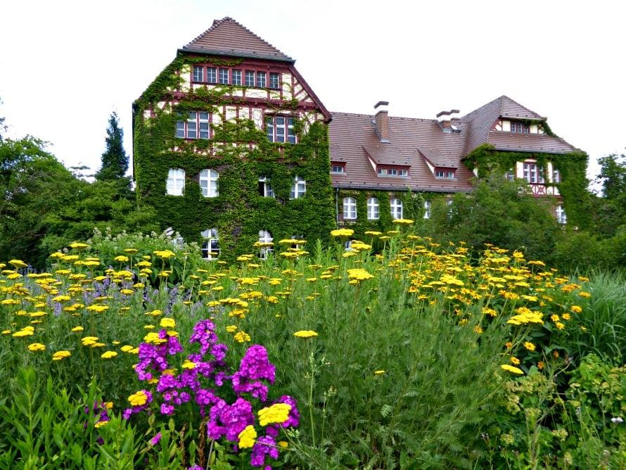 Botanischer Garten, Berliinin kasvitieteellinen puutarha