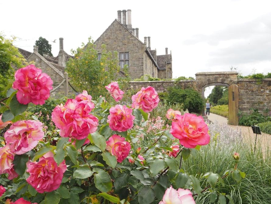 Wakehurstin aidattu puutarha, walled garden, on kuuluisa.