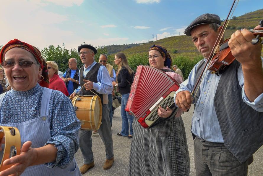Pelimanniryhmä tervehtii sadonkorjuujuhlaan saapuvia Campanhãn viinitilalla.