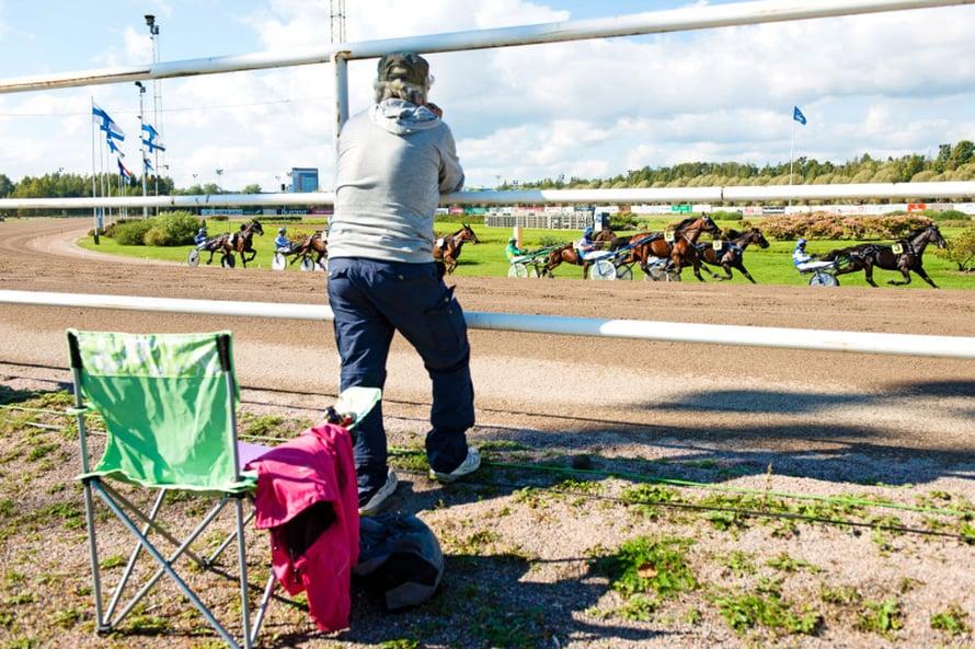 Moni tulee raveihin katsomaan hevosia pelkästä ilosta.