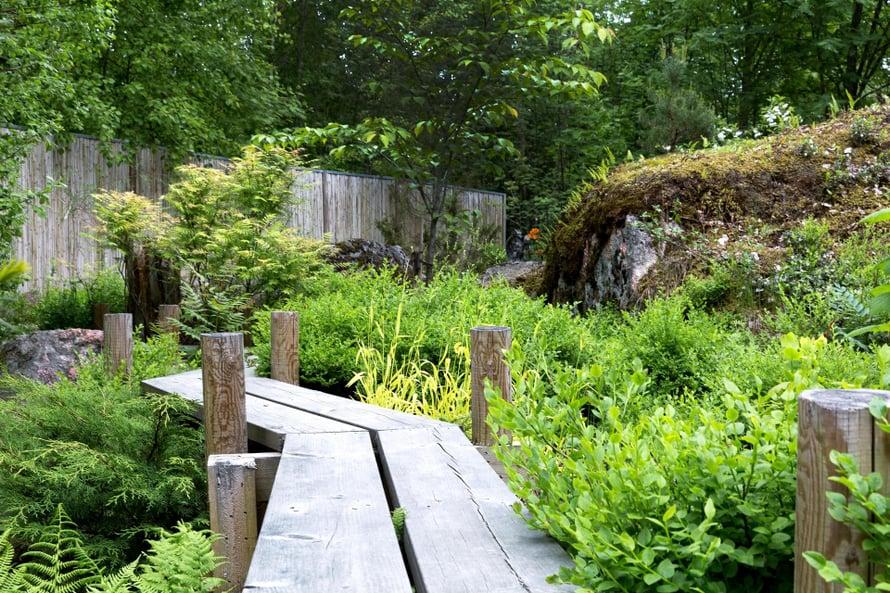 Osassa japanilaista puutarhaa kuljetaan pitkospuilla.