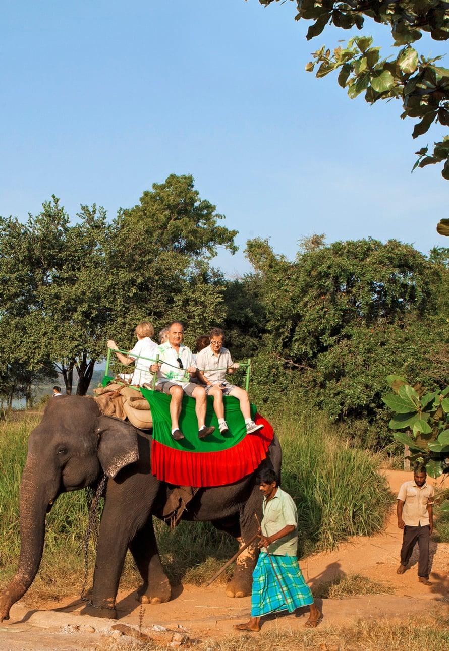 Haparanan norsusafarille lähdetään varhain aamulla, kun ei vielä ole liian kuuma.