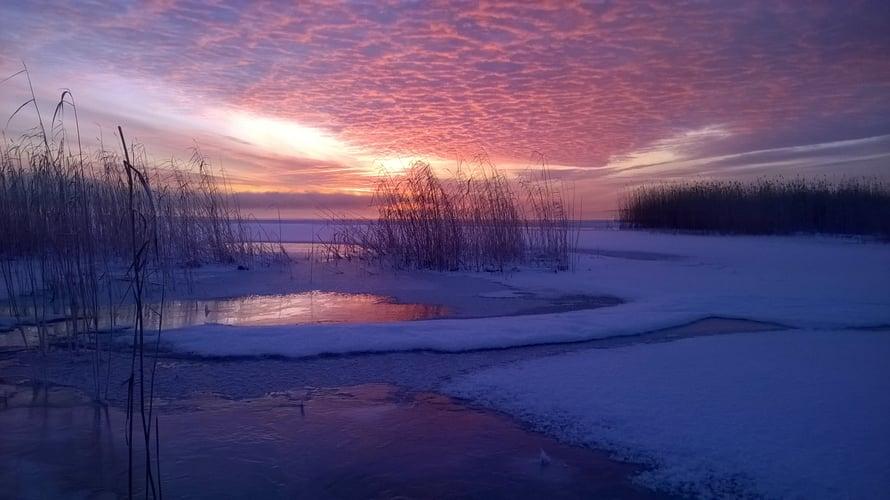 Anitta Räsänen lähetti tämän aamuauringon värittämän pakkaskuvan Joensuun seudulta.