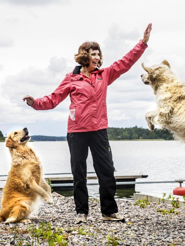 Hoplaa! Tiina Paavola ja koirat Sindy ja Sani treenaavat päivittäin koiratanssia.