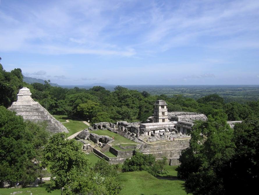 Palenquen mayarauniot sijaitsevat viidakon keskellä.